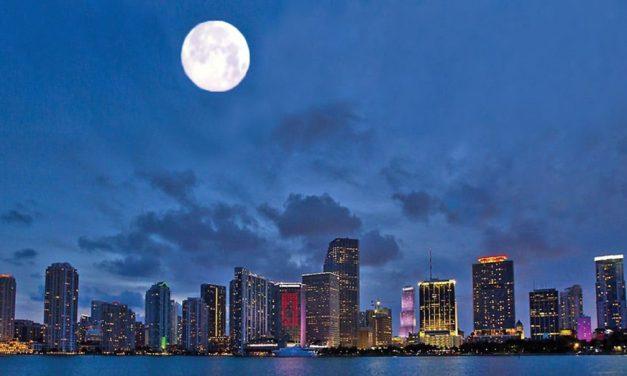 De Miami a las estrellas