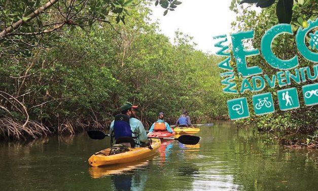 EcoAdventures: Cuando Miami se vuelve más que una aventura